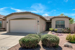 3003 E PEACH TREE Drive, Chandler, AZ 85249