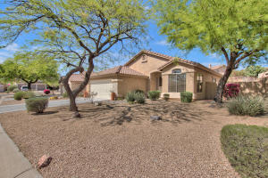 10428 E SALT BUSH Drive, Scottsdale, AZ 85255