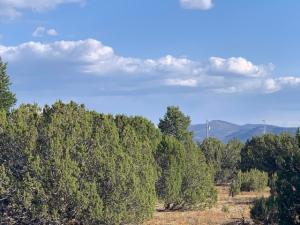 174 Co Rd 3187 9 Acres Lot 1, -, Vernon, AZ 85940