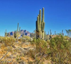 0000 N Wolverine Pass Road, -, Apache Junction, AZ 85119