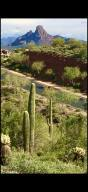 9606 N HIDDEN CANYON Court, 26, Fountain Hills, AZ 85268