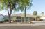 30 yr old Mesquite Tree & Saguaro Cactus