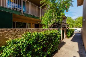 6565 N 19TH Avenue, 38, Phoenix, AZ 85015