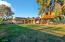 Huge backyard with treehouse