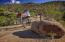 9683 E MARIOLA Way, Scottsdale, AZ 85262