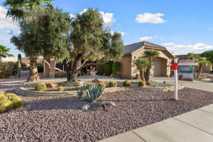 14019 W BLACK GOLD Lane, Sun City West, AZ 85375