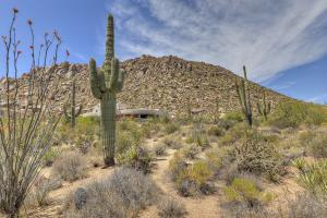 11355 E YEARLING Drive, 199, Scottsdale, AZ 85255
