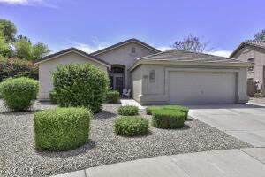 6751 W FIREBIRD Drive, Glendale, AZ 85308