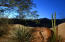 37802 N STIRRUP Circle, Carefree, AZ 85377