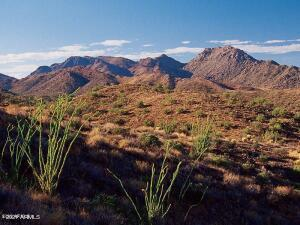 14248 E GREY OWL Trail, 166, Fountain Hills, AZ 85268