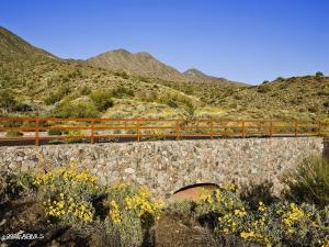 16020 N RINGTAIL Trail, 239, Fountain Hills, AZ 85268