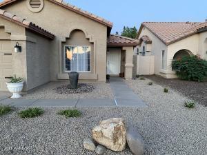 895 S CAMELLIA Drive, Chandler, AZ 85225