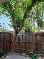 6030 W TOWNLEY Avenue W, Glendale, AZ 85302
