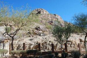 14829 S 14TH Place, Phoenix, AZ 85048
