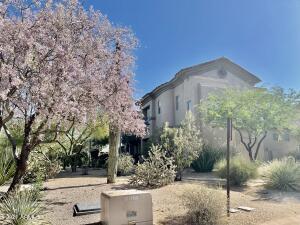 20801 N 90TH Place N, 202, Scottsdale, AZ 85255