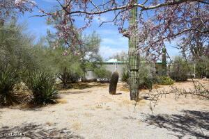 Nestled on .79 acres of natural desert landscape.