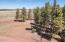0000 E Pinetree Drive, Williams, AZ 86046