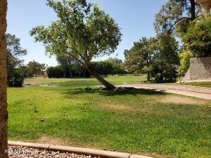 5124 N 31ST Place, 516, Phoenix, AZ 85016