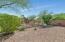 Backyard - Professionally Landscaped