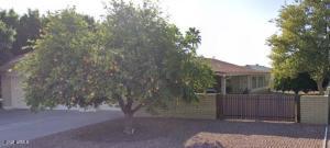 6156 E ADOBE Road, Mesa, AZ 85205
