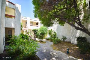3119 W COCHISE Drive, 249, Phoenix, AZ 85051