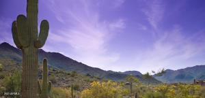 3551 N PEPPER GRASS Way, 411, Buckeye, AZ 85396