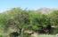 16712 N 106TH Way N, Scottsdale, AZ 85255