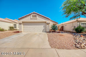 Low Maintenance Desert Front and Back Yards !