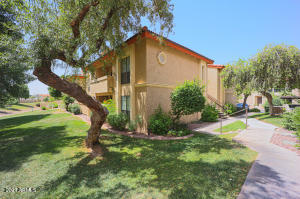 10410 N CAVE CREEK Road, 1211, Phoenix, AZ 85020