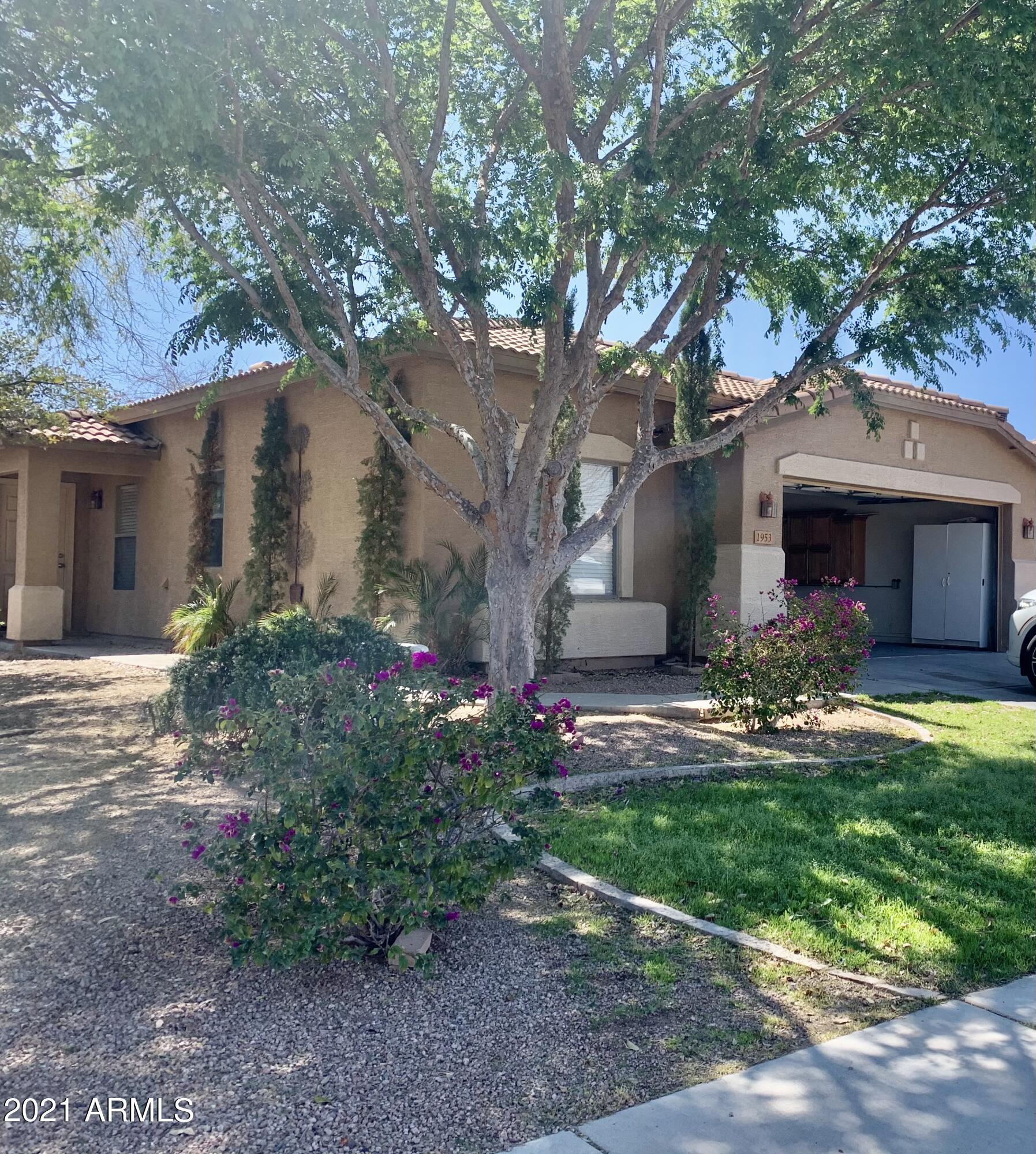 1953 ALLENS PEAK Drive, Queen Creek, Arizona 85142, 3 Bedrooms Bedrooms, ,2 BathroomsBathrooms,Residential,For Sale,ALLENS PEAK,6248294