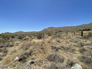 14219 E WHITE WING Court, 96, Fountain Hills, AZ 85268