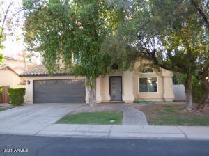 936 N SEABORN Lane, Gilbert, AZ 85234