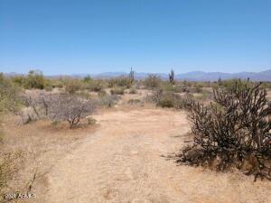 169X3 E Lone Mountain Road, -, Rio Verde, AZ 85263