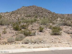 21382 W BLACK ROCK Drive, 19, Buckeye, AZ 85396