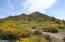 Solera Views