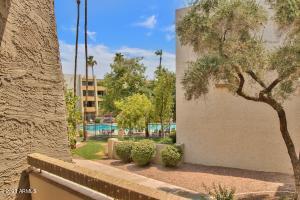 7625 E CAMELBACK Road N, A237, Scottsdale, AZ 85251