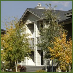 4343 E SOLIERE Avenue, 1059, Flagstaff, AZ 86004