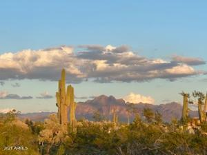 You can own 2.5 acres of horse property in NE Mesa with this Amazing view out your front door!
