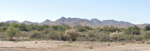 xxx S Norton Drive, 7, Buckeye, AZ 85326