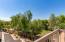 Large Deck overlooking Park