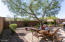 Backyard with Partial View Fencing, Extended Paver Patio on an Open Space Lot