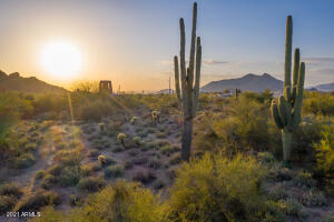 Sunset View from the area, (Saguaros are not on this lot.)