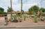 10616 N 60TH Place, Scottsdale, AZ 85254