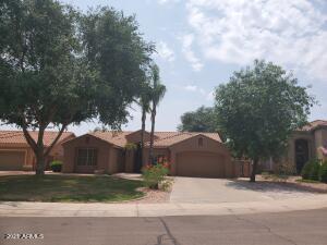 441 E Palo Brea Court, Gilbert, AZ 85296