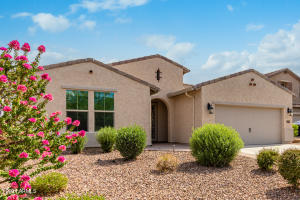 3745 W BINGHAM Drive, New River, AZ 85087