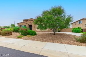 31271 N 133RD Drive, Peoria, AZ 85383