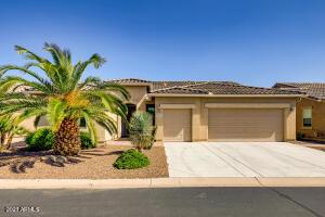 42942 W DARTER Drive, Maricopa, AZ 85138