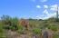 Backyard Boulder Views