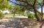 Tree lined walkways