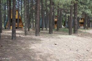 793 BILLS Loop, Forest Lakes, AZ 85931